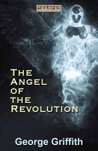 Omslagsbild: The angel of the revolution av