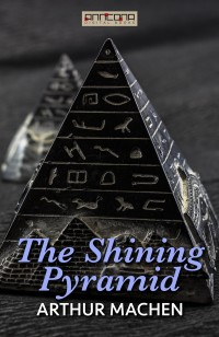Omslagsbild: The shining pyramid av