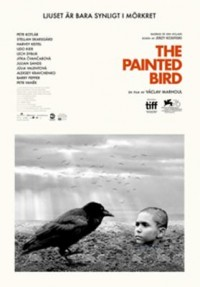 Omslagsbild: The painted bird av