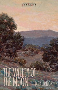 Book cover: The valley of the moon av
