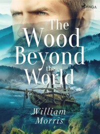 Omslagsbild: The wood beyond the world av