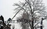 Till minne av Förintelsen